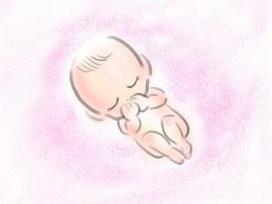 赤ちゃんしゃっくり胎児