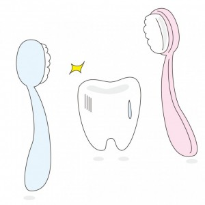 乳歯 洗浄
